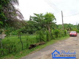 Land for Sale at Pelawatta